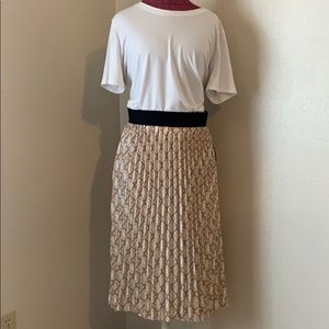 Beautiful LuLaRoe Jill Skirt